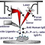 nanoscale mechanics